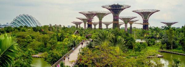 Singapour-Structures -Cultures